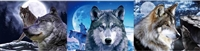 132 3D Lenticular Picture Flip New Moon Wolf