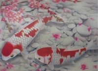 184 3d 2 koi white and red 2a2025