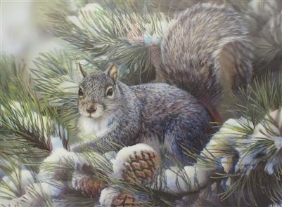 224 3d squirrel 2a2042