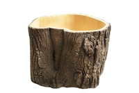 Willow Tree Finishing Tree Trunk Planter