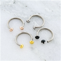 16G 316L STEEL HORSESHOE WITH DOME ENDS