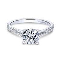 This 14k white gold diamond engagement ring with 00.25 carats of diamond shine.