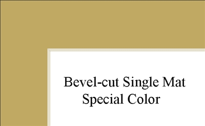 "10"" x 12"" (6 1/2"" x 8 1'2"") Single Mat - Special Colors"