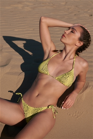 Yellow & Black Snake Print Self-Tie Back And Neck Triangle Bikini Top & Side Self-Tie  Straps Bikini Bottom Two-Piece Swimsuit /1-2-1-1