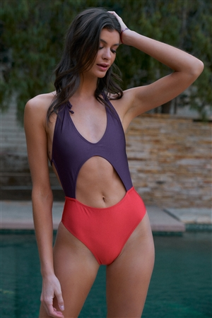 Orange & Eggplant Color Block V-Neck Front Cut-Out Open Back High-Leg One Piece Swimsuit /2-2-1-1
