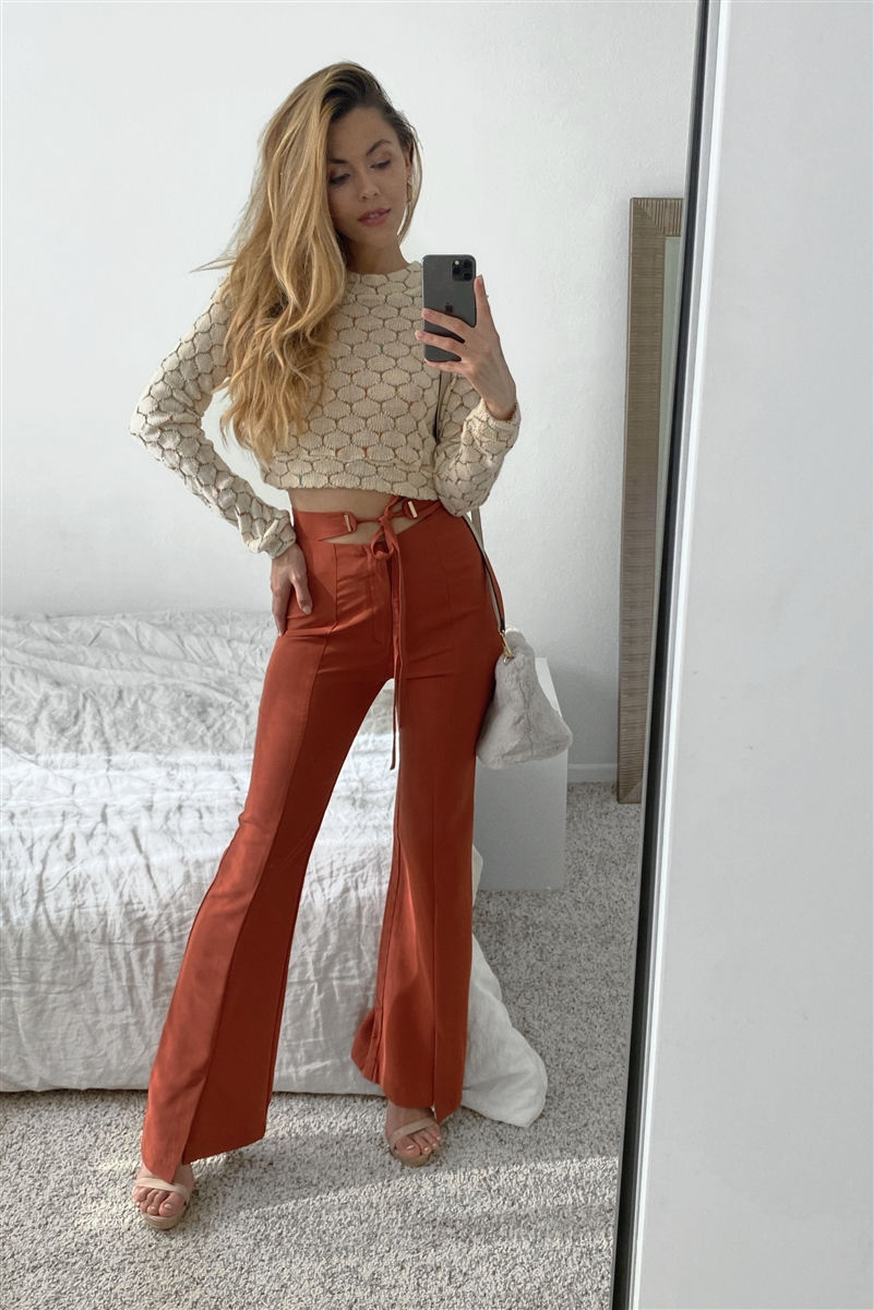 Brick High-Waisted Pleated Mini Ankle Slit Wide Leg Pant
