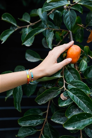 Gold Multi-Colored Beaded Braceletes