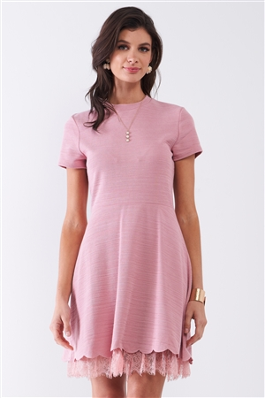 Blush Short Sleeve Lace Mesh Lining Detail Knit Mini Dress /1-2-2-1