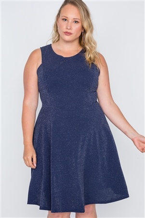 Plus Size Navy Sleeveless A-Line Evening Dress