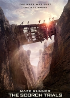 Maze Runner: The Scorch Trials HD Digital Copy Code (VUDU/iTunes/GooglePlay/Amazon)