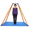 Haley's Joy - On the Go Swing System 2 IS Designed for therapeutic swing therapy in places such as schools, homes, clinics or hospitals, this easy to transport Haley's Joy® On the Go Swing Frame and Mat
