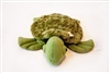 Got Special Kids | Tyler the Weighted Turtle provides a lap pad for soothing any person.