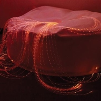 LED Fiber Optic Softie - Calming