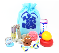 Got Special KIDS|American Occupational Therapy Association Toy Fidget Bag
