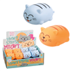 Got Special KIDS| Don't Stress Meowt Kitties  Chubby Kitties