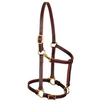 3/4in Leather Track Horse Halter by Weaver Leather at Working Horse Tack in Ohio