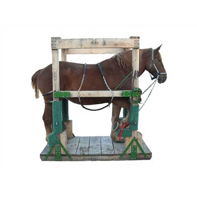 Draft & Haflinger Horseshoeing Stocks