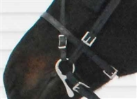 Deluxe Harness - Caveson Noseband