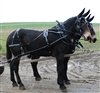 Team Mule Harness