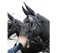 Draft Bridles - Set of Two