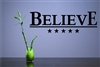 BELIEVE. Vinyl Wall Art Decal Sticker