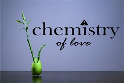 Chemistry of love Vinyl Wall Art Decal Sticker