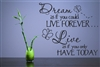 Dream as if you could LIVE FOREVER.. Live as if you only HAVE TODAY  Vinyl Wall Art Decal Sticker