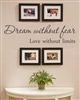 Dream without fear Love without limits Vinyl Wall Art Decal Sticker