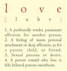 Love (luhv) definition Vinyl Wall Art Decal Sticker
