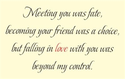 Meeting you was fate, becoming your friend was a choice, but falling in love with you was beyond my control. Vinyl Wall Art Decal Sticker