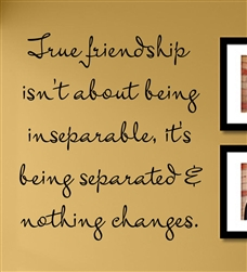 True friendship isn't about being inseparable, it's being separated & nothing changes. Vinyl Wall Art Decal Sticker