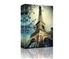 Eiffel Tower Paris, France GALLERY WRAPPED CANVAS