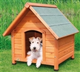 Weatherproof Small Dog House