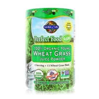 Perfect Food RAW 100% Organic Young Wheat Grass Juice Powder - 4.2 oz (120g) - Garden of Life