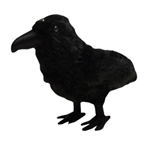 Game Of Thrones - 3 Eyed Raven Plush
