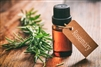 Pure Rosemary Essential Oil