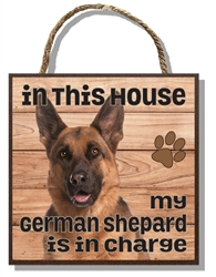German Shepherd in Charge 60015