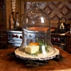 Pictured here is the Vineyard Cloche Stand by Bella Toscana