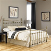 Leighton Iron Bed Antique Brass Finish Traditional Curved Rails