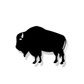 Wrought Iron Buffalo Magnet