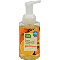 CleanWell Natural Antibacterial Foaming Handsoap - 9.5 oz