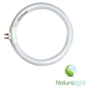 12W Naturalight™ Circular Tube - Energy Saving by The Daylight Company (UN0004)