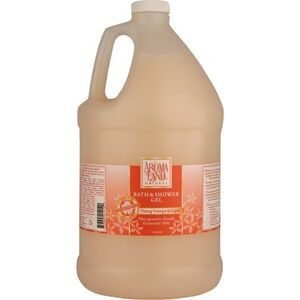 Bath & Shower Gel - Ylang Ylang & Ginger 1 Gallon (741GSGY)