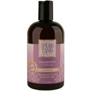 Shampoo - Lavender 12 oz. 6 Pack - Gifts Wedding Favors Retail (7412SHL-6)