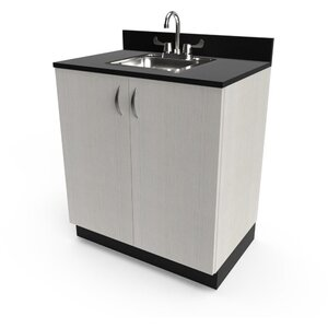 "Organizer 32"" Sink Cabinet 32""W x 21""D x 36""H 50+ Color Choices Made to Order - Ships in 2-3 Weeks (3373-32)"