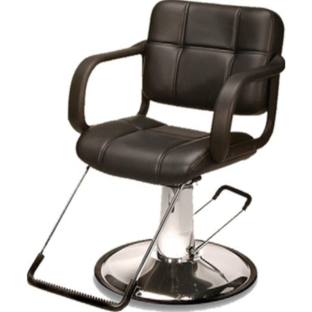Hydraulic Styling Chair element bhorium hydraulic styling chair (bh-107)