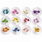 Nail Art Special Effect - Dried Flower Kit Pack of 12 (520258)