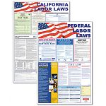 "StateFederal Labor Lawith Legally Required Multi-Colored Poster 24"" x 30"" (AVT83905)"