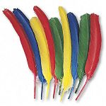 Quill Feathers Assorted Colors 24 FeathersPack (CKC4503)
