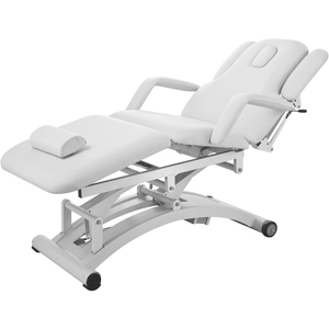 Lind 3 Motor High Performance Electric Massage & Physiotherapy Bed (2241C)